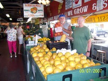 Pells Citrus & Nursery